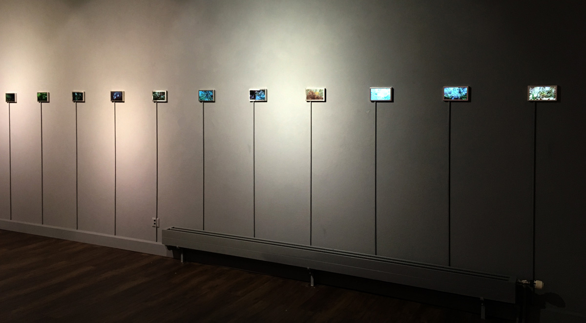 Irene Naef - Art Project Staffelbach