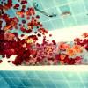 Die Rosenlast stürzt lautlos von den Wänden